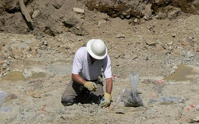 Sampling in the stripped Bonanza Trench